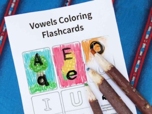 Coloring learning activity for Preschool level kids- blank flash cards for upper case letters and lower case vowels. They can add their own drawings to the cards using words that are already familiar to them (like their family members' names). Cut in half to make a puzzle or memory game :) To see more detailed ideas of games that you can do using this printable, visit: https://www.boxofideas.com/vowels