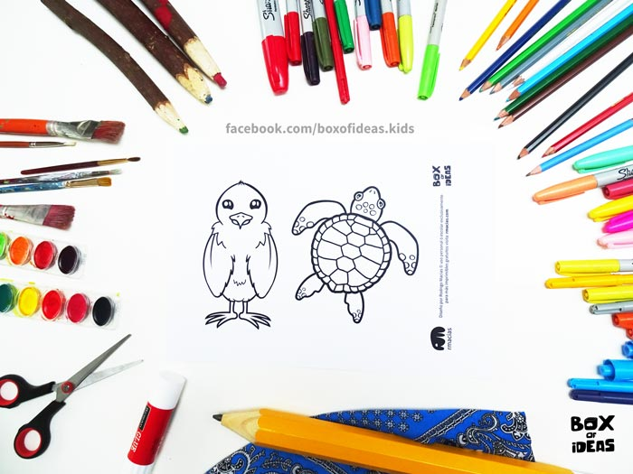 printable-preview-Bird-and-Turtle-Animal-adults-and-Kids-Drawings-for-Inclusive-DIY-Modern-Fathers-Day-Card-by-box-of-ideas-03